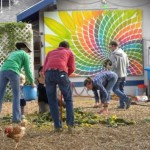 Community Gardening for Healthy Eating, Healthy Lifestyles and Healthy Communities